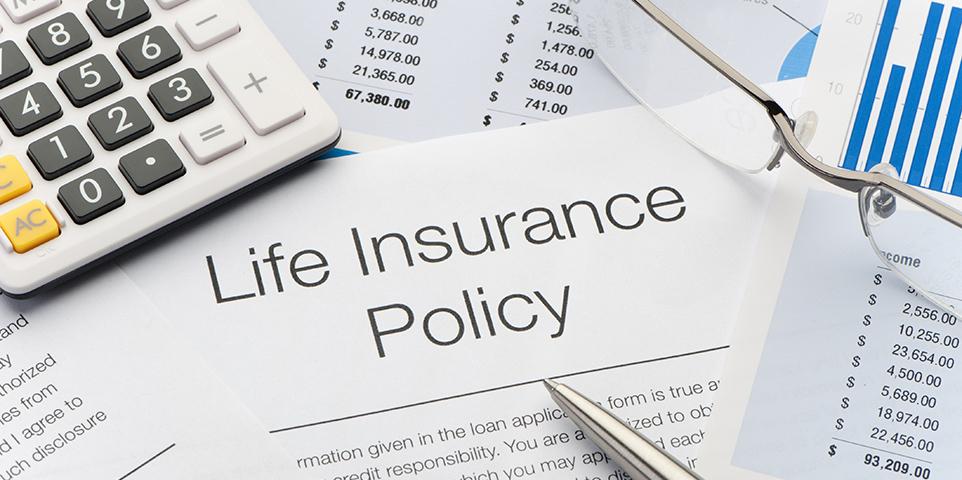 Плюсовете и минусите на политиките за цял живот